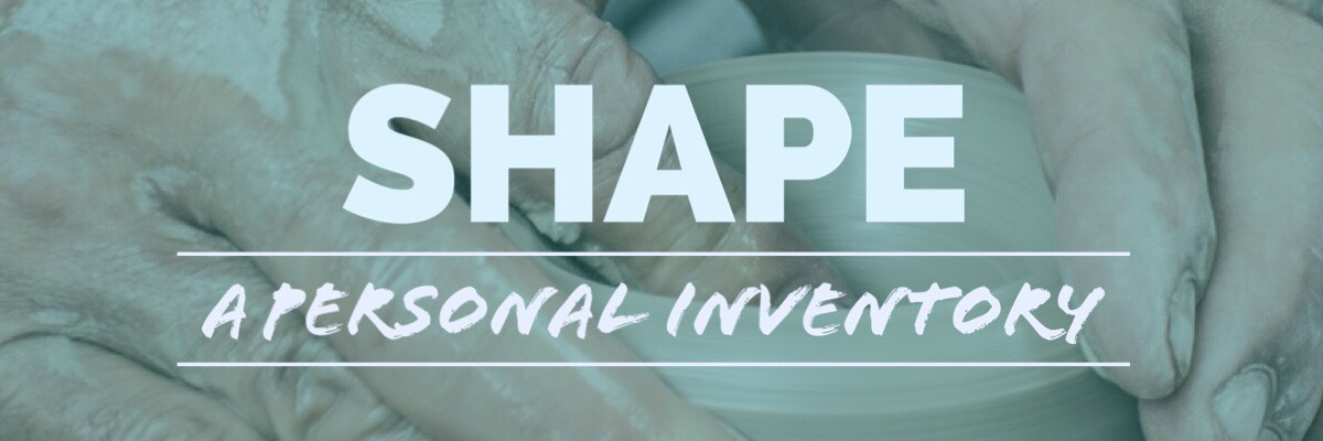 SHAPE - A Personal Inventory